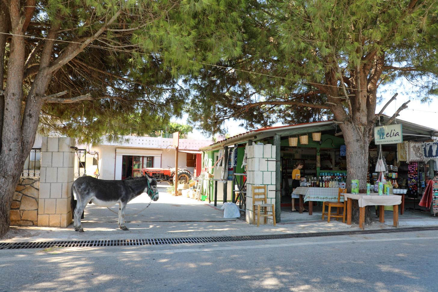 Agios Leon